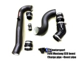 Charge Pipe & Boost Pipe FTP Motorsport Ford Mustang 2.3T EcoBoost (15-)