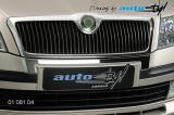 Chrom pod přední masku, Škoda Octavia II