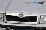 Lišta masky - chrom, Škoda Octavia 2001