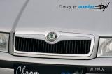 Lišta masky - pro lak, Škoda Octavia 2001