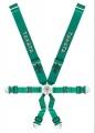 Bezpečnostní závodní pás Takata Race 6 6-bodový zelený - uchycení na sponu (FIA)